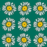 Beautiful vintage background with white daisies. Seamless pattern on green background. Vector illustration Stock Images