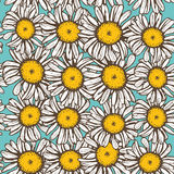 Beautiful vintage background with white sketch daisies seamless pattern on light blue background. Vector Royalty Free Stock Photos