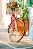 Beautiful vintage bicycle near the house on italian street Royalty Free Stock Image