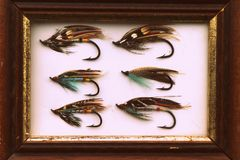 Vintage classic salmon flies fly fishing picture. These beautiful vintage fully-dressed salmon flies were once used for fly fishing for atlantic salmon royalty free stock image
