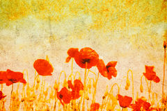 Beautiful vintage postcard background. With red poppies Royalty Free Stock Image