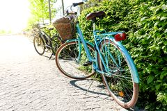 Beautiful vintage retro bike parked by a green bush. Brown basket on pastel turquoise bicycle stock images
