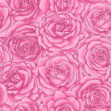 Beautiful vintage seamless pattern with pink roses. Stock Photos