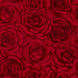 Beautiful vintage seamless pattern with red roses. Stock Images