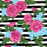 Beautiful vintage seamless pattern with rosebuds, leaves and stems on black and white watercolor stripes Royalty Free Stock Photography