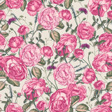 Beautiful Vintage Seamless Roses Background Royalty Free Stock Photos