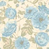 Beautiful Vintage Seamless Roses Background Stock Image