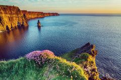 Beautiful vintage style scenic irish countryside landscape from the cliffs of moher in ireland. Stock Photo