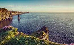 Beautiful vintage style scenic irish countryside landscape from the cliffs of moher in ireland. Beautiful vintage style scenic irish countryside landscape from Royalty Free Stock Images