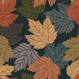 Beautiful vintage tree leaves seamless Stock Images