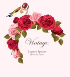 Beautiful vintage vector card with goldfinch Stock Image