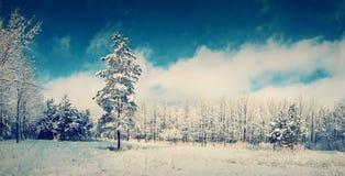 Beautiful vintage winter landscape Stock Photos