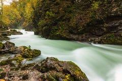 Beautiful Vintgar Gorge near Bled, Slovenia Royalty Free Stock Image