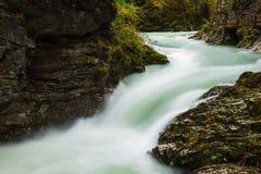 Beautiful Vintgar Gorge near Bled, Slovenia Royalty Free Stock Photo