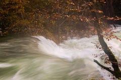 Beautiful Vintgar Gorge near Bled, Slovenia Stock Photo
