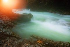 Beautiful Vintgar Gorge near Bled, Slovenia Stock Image