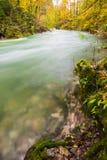 Beautiful Vintgar Gorge near Bled, Slovenia Royalty Free Stock Photos
