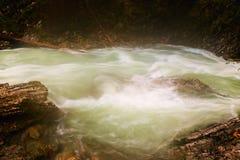Beautiful Vintgar Gorge near Bled, Slovenia Stock Images