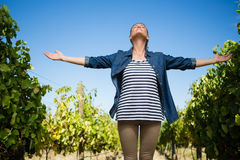 Beautiful vintner standing with arms outstretched in vineyard. On a sunny day Stock Photo