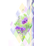 Beautiful violet flower on a colorful rhombus background. Can use for brochure, flyer, business card. Stock Image