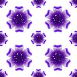 Beautiful violet flower. Seamless floral pattern. Vector Royalty Free Stock Photo