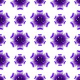 Beautiful violet flower. Seamless floral pattern. Vector Stock Photography