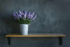 Beautiful violet Flower in zinc bucket no the wood floor and cem Stock Images