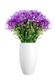 Beautiful violet flowers in vase isolated on white Stock Image