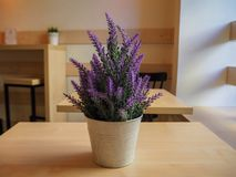 Beautiful violet lavender in a iron little bucket on the wooden table stock photo