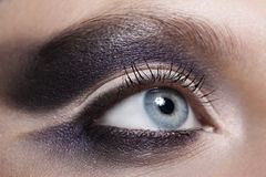 Beautiful violet makeup Stock Photography