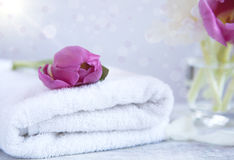 Beautiful violet tulip flowers on a white towel Stock Photos