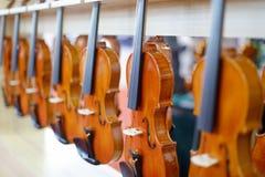 Whole row violin, adobe rgb Royalty Free Stock Image