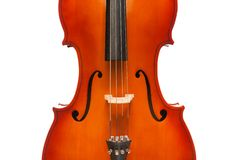 Beautiful violoncello body in vertical position Royalty Free Stock Images