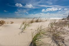 Beautiful virgin seashore with white sand and green plants. Nice cloudy seascape of virgin seashore with white sand green plants Royalty Free Stock Image