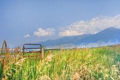 Beautiful Vista of Absaroka Mountain Farm. Beautiful vista of a Happy Valley, Montana field, has scenic view of the Absaroka Mountains.  Gate and fence runs Stock Images