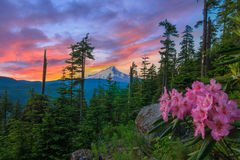 Beautiful Vista of Mount Hood in Oregon, USA. Stock Photo