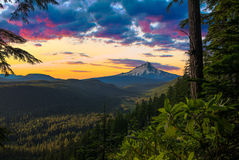 Beautiful Vista of Mount Hood in Oregon, USA Stock Photography