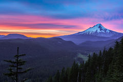 Beautiful Vista of Mount Hood in Oregon, USA royalty free stock image