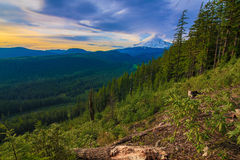 Beautiful Vista of Mount Hood in Oregon, USA. Royalty Free Stock Photography