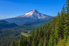 Beautiful Vista Of Mount Hood In Oregon, USA. Stock Images