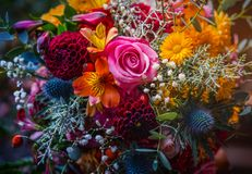 Beautiful, vivid, colorful mixed flower bouquet. Still life detail, gerbers, rose, daffodils, etc Royalty Free Stock Image