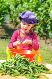 Beautiful vivid dressed girl unwrapping vegetables in garden Royalty Free Stock Image