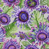 Beautiful vivid purple African daisy flowers with green monstera leaves on gray background. Seamless bright floral pattern. Watercolor painting. Hand painted royalty free illustration