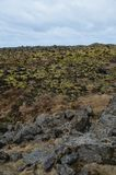 Volcanic black rocks with lush green moss on them royalty free stock images