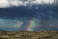 Beautiful volcanic mossy landscape in Iceland over the Raindbow at summer royalty free stock image