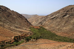 Beautiful volcanic mountains . Panoramic view on Fuerteventura Stock Images