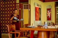 Beautiful waitress wearing uniform in the thai restaurant serving tea with a smile. Beautiful waitress wearing traditional uniform clothes in the thai restaurant stock images