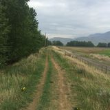 Beautiful walk down scenic Kamloops trail!. Beautiful scenic trail Royalty Free Stock Photos