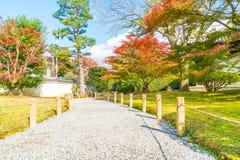 walk way in autumn park Royalty Free Stock Photo