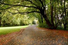 A beautiful walking trail Stock Photo